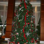 Large and lovely tree in the lobby