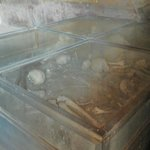 Remains of bones of fugitives