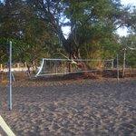 Terrain de Volley / centre communautaire