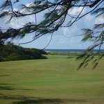 Kahuku 9 hole golf course...beautiful views, fun course!!! Economical too