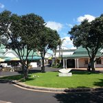 Town Basin in Whangarei, great palace for lunch or shopping