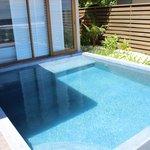 large Plunge pool