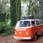 Kombi Nation Tours - Day Trips