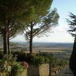My favourite driveway in Italy, La Maesta' Agriturismo