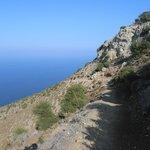 on Aphrodite trail