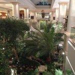 Lobby/Atrium