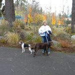 Reinhart Volunteer Park Foto