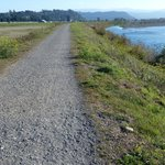 South walk on the Eel River