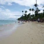 Playa hotel Royal Suites Turquesa