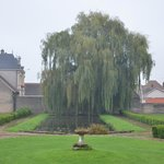 Photo de Chateau de Chorey Les Beaune