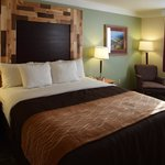 Comfort Inn and Suites Durango Foto