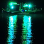 Fisherman at night , telephoto