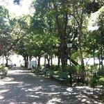 Jardins da praça