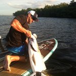 We offer fishing trips