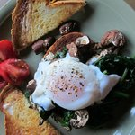 Farm fresh Poached eggs with wild mushrooms and spinach