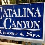 Catalina Canyon Resort & Spa