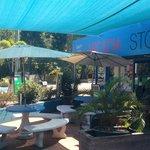 ARCADIA STORE NEVER UNDERESTIMATE THE IMPORATNCE OF BEING PROPERLY CAFFEINATED