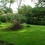 Der wundervolle Garten