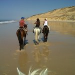 Caballos por la playa de Doñana / Donana beach with horses