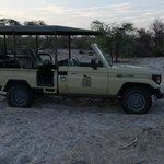 Fahrzeug für Wildbeobachtungsfahrten