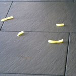 Food on the floor