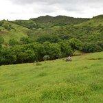 QUAD-bike excursion - Frederica Nature Reserve
