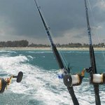 Deep Sea Sports Fishing Charters