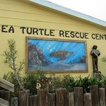 Great place to take the kids and educate them about sea turtles