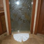 Cool shower door
