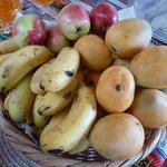 Massenhaft frische Früchte - Zwergmangos, Zwergbananen