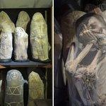Mumiensammlung