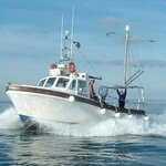 Mystique for all your shark, wreck,reef and deep sea fishing from Newquay , Cornwall.