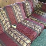 dogwood cabin couch should be on the curb