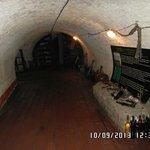 cantina museo del vino