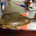 Fresh from Alaska to be serve by the week end