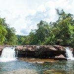 Jungle Trek tour