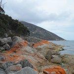 Vue sur la Baie de Wineglass (3)
