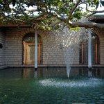 中庭の噴水