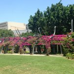La universidad y varios centros culturales y museos