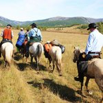 Horse trekkin Khentii