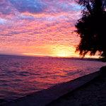 PoGo Sunset