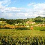 Photo of Agriturismo La Bruciata