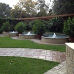 Fountains in the garden.