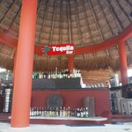 Tequila Bar! Best Bartenders in Mexico!