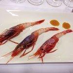 Almost rare shrimps from Vilanova