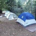 Great tent sites