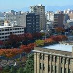 View of Oike Dori autumn leaves