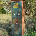 Cat Forest sign.