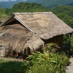 A bamboo hut