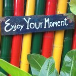 Enjoy your moment at spicy villa